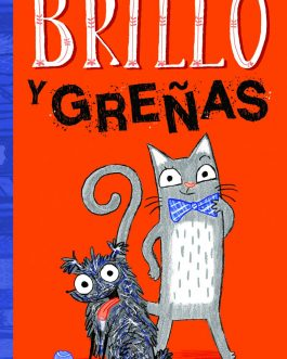 Brillo y Greñas